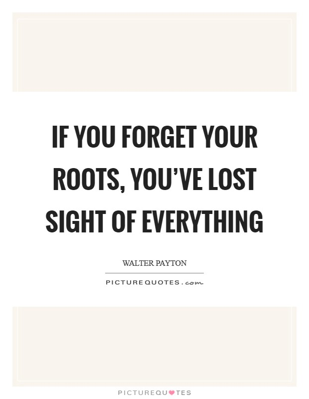 If you forget your roots, you've lost sight of everything Picture Quote #1