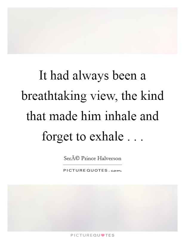 It had always been a breathtaking view, the kind that made him inhale and forget to exhale . .  Picture Quote #1