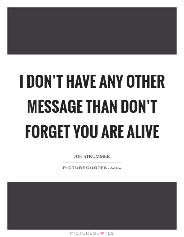 I don't have any other message than don't forget you are alive Picture Quote #1