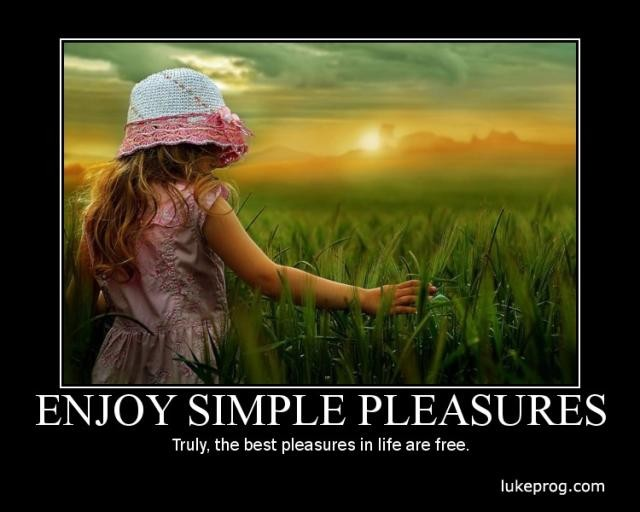 Lifes Pleasure Quote 2 Picture Quote #1