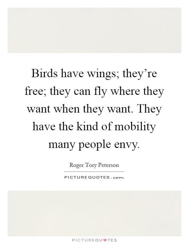 Birds have wings; they're free; they can fly where they want when they want. They have the kind of mobility many people envy Picture Quote #1