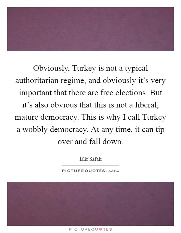 Obviously, Turkey is not a typical authoritarian regime, and obviously it's very important that there are free elections. But it's also obvious that this is not a liberal, mature democracy. This is why I call Turkey a wobbly democracy. At any time, it can tip over and fall down. Picture Quote #1