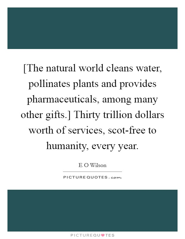 [The natural world cleans water, pollinates plants and provides pharmaceuticals, among many other gifts.] Thirty trillion dollars worth of services, scot-free to humanity, every year. Picture Quote #1
