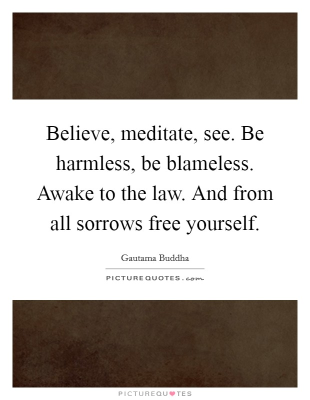Believe, meditate, see. Be harmless, be blameless. Awake to the law. And from all sorrows free yourself. Picture Quote #1