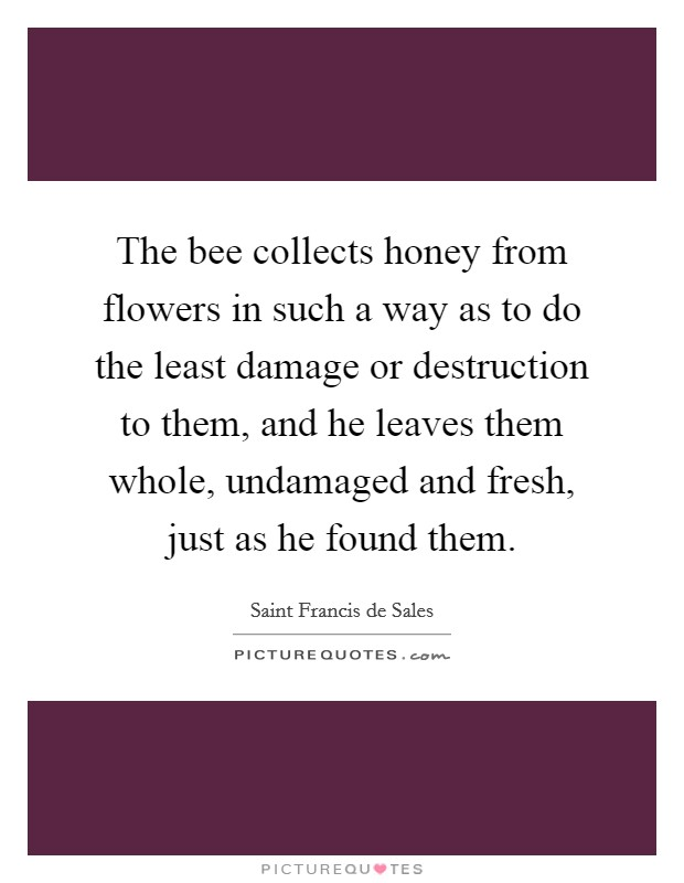 The bee collects honey from flowers in such a way as to do the least damage or destruction to them, and he leaves them whole, undamaged and fresh, just as he found them Picture Quote #1