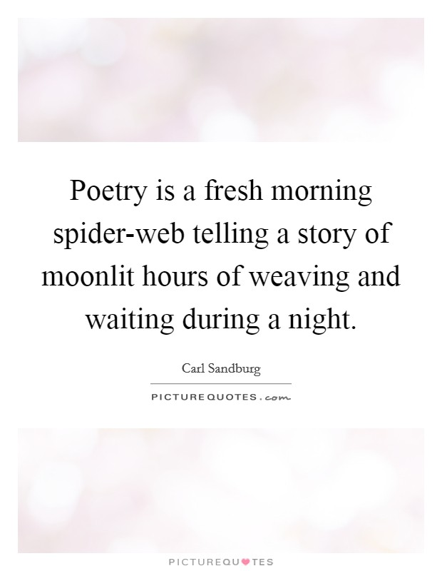 Poetry is a fresh morning spider-web telling a story of moonlit hours of weaving and waiting during a night Picture Quote #1