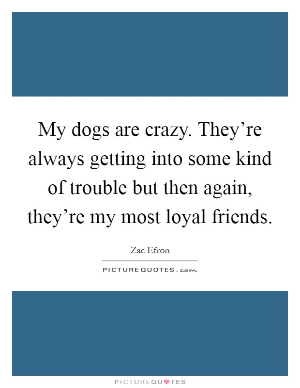 My dogs are crazy. They're always getting into some kind of trouble but then again, they're my most loyal friends Picture Quote #1