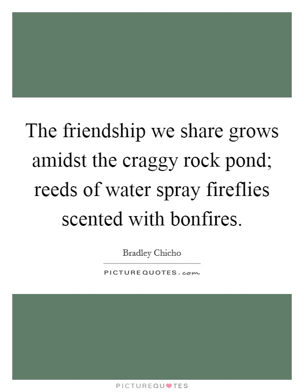 The friendship we share grows amidst the craggy rock pond; reeds of water spray fireflies scented with bonfires Picture Quote #1