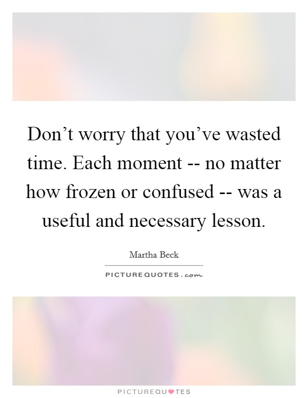 Don't worry that you've wasted time. Each moment -- no matter how frozen or confused -- was a useful and necessary lesson Picture Quote #1