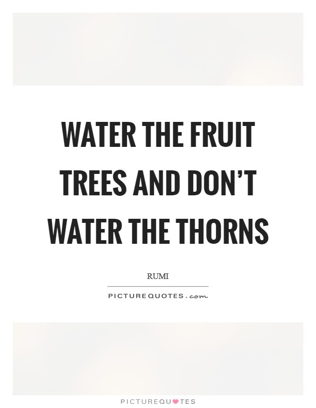 Water the fruit trees and don't water the thorns Picture Quote #1