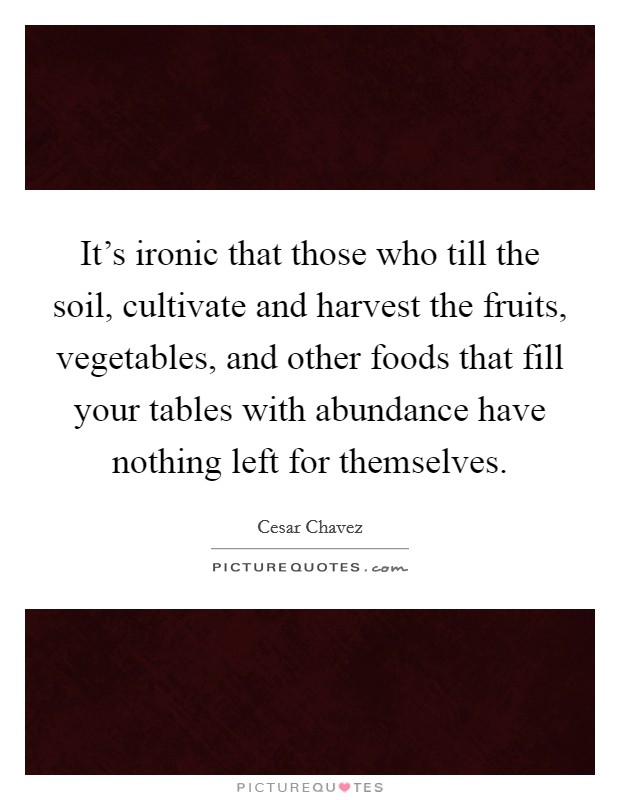 It's ironic that those who till the soil, cultivate and harvest the fruits, vegetables, and other foods that fill your tables with abundance have nothing left for themselves Picture Quote #1