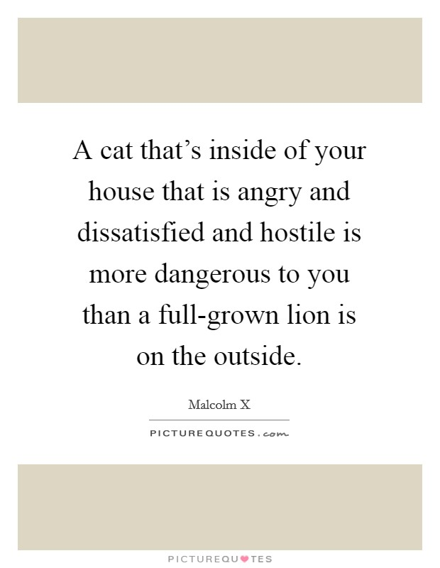A cat that's inside of your house that is angry and dissatisfied and hostile is more dangerous to you than a full-grown lion is on the outside Picture Quote #1