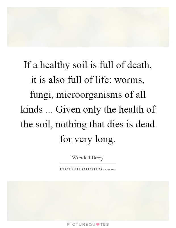 If a healthy soil is full of death, it is also full of life: worms, fungi, microorganisms of all kinds ... Given only the health of the soil, nothing that dies is dead for very long Picture Quote #1