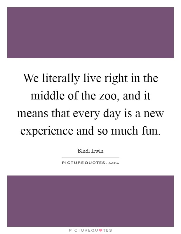 We literally live right in the middle of the zoo, and it means that every day is a new experience and so much fun. Picture Quote #1