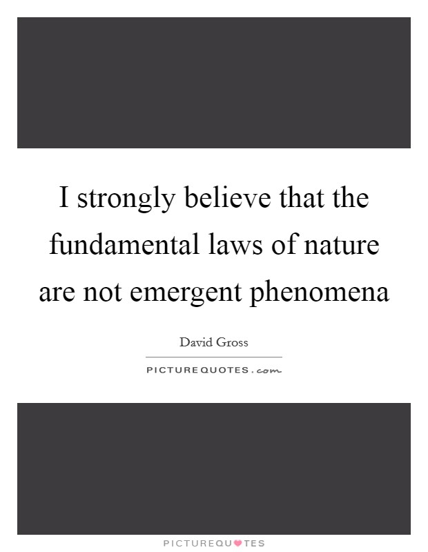 I strongly believe that the fundamental laws of nature are not emergent phenomena Picture Quote #1