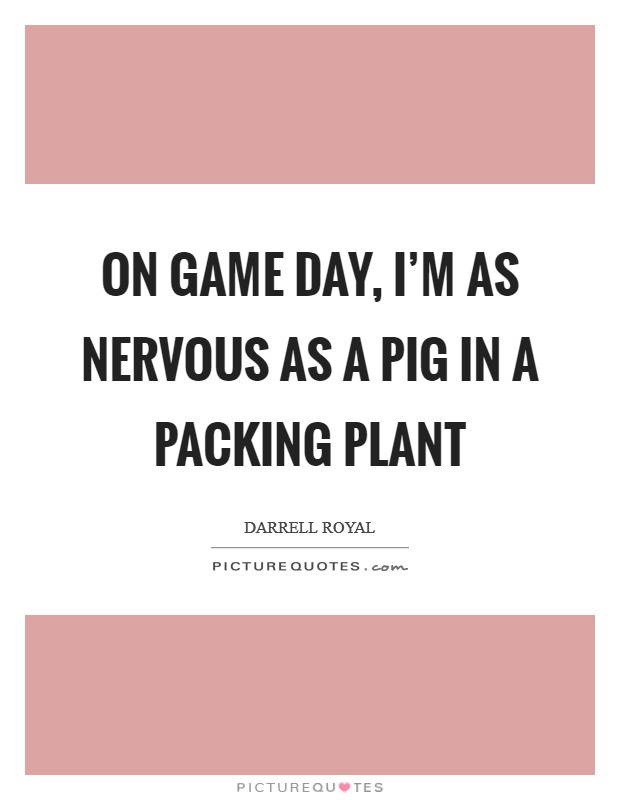 On game day, I'm as nervous as a pig in a packing plant Picture Quote #1
