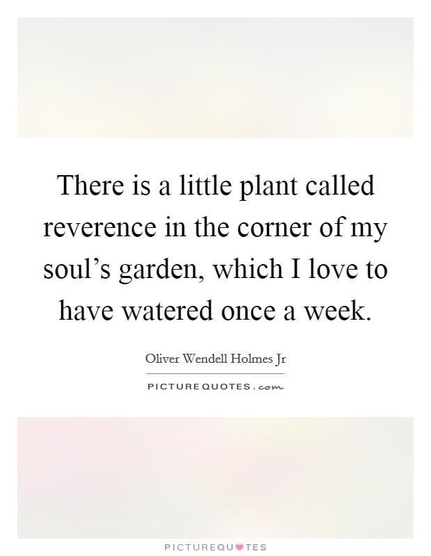 There is a little plant called reverence in the corner of my soul's garden, which I love to have watered once a week Picture Quote #1