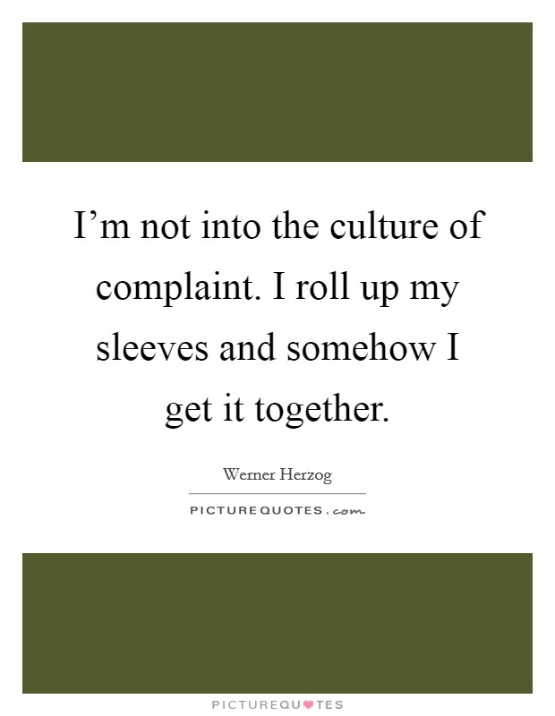 I'm not into the culture of complaint. I roll up my sleeves and somehow I get it together Picture Quote #1