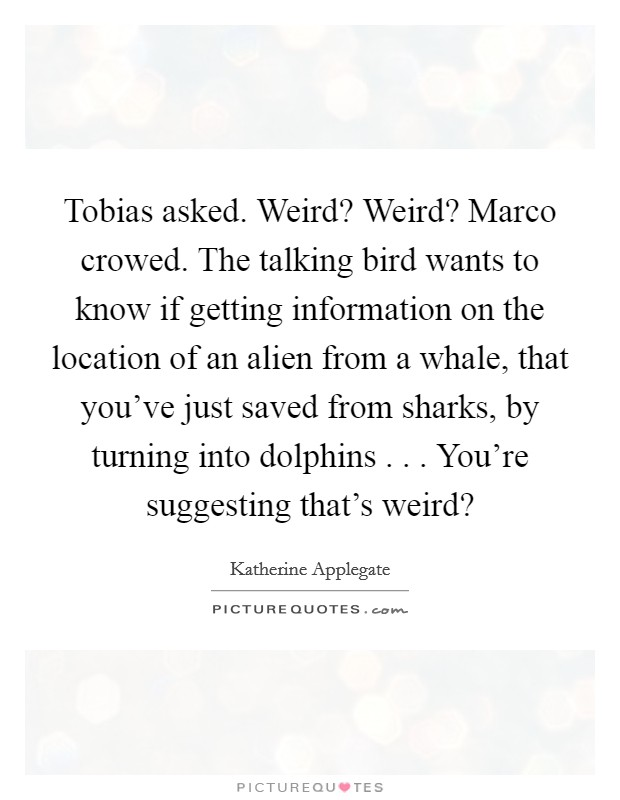 Tobias asked. Weird? Weird? Marco crowed. The talking bird wants to know if getting information on the location of an alien from a whale, that you've just saved from sharks, by turning into dolphins . . . You're suggesting that's weird? Picture Quote #1