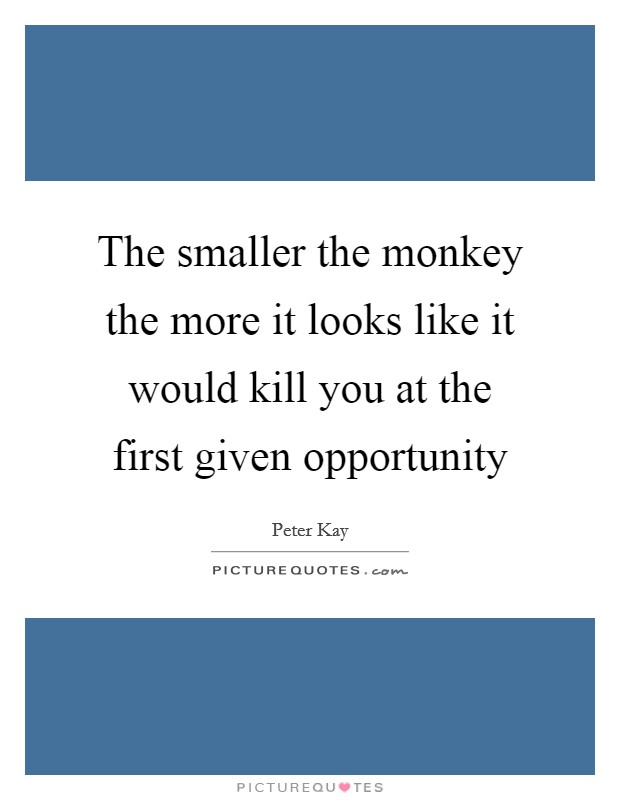 The smaller the monkey the more it looks like it would kill you at the first given opportunity Picture Quote #1