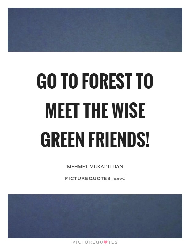 Go to forest to meet the wise green friends! Picture Quote #1