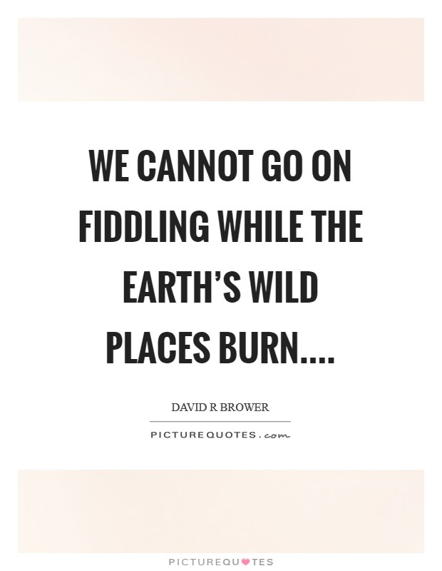 We cannot go on fiddling while the earth's wild places burn.... Picture Quote #1