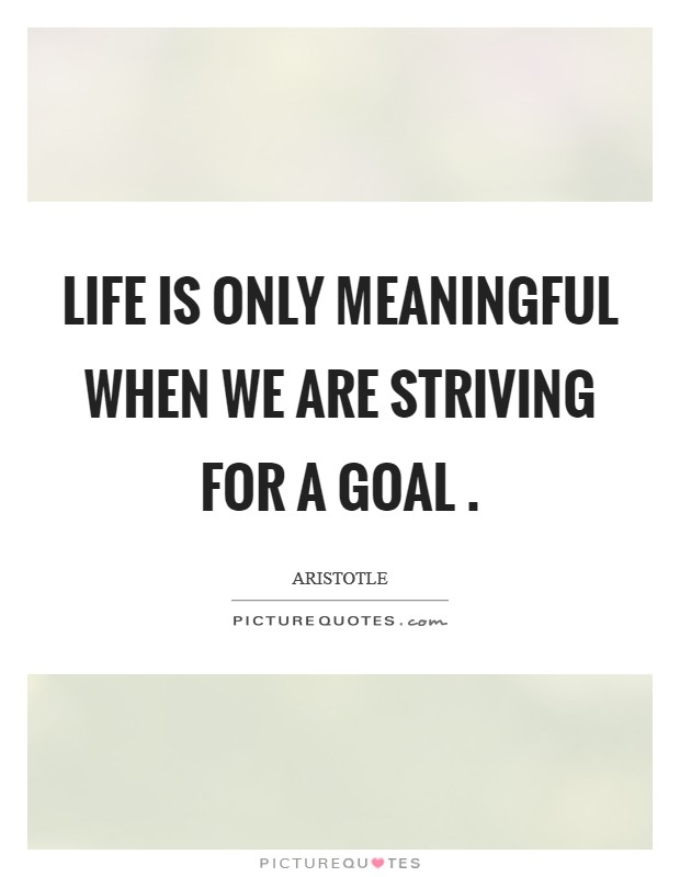 Life is only meaningful when we are striving for a goal  Picture Quote #1