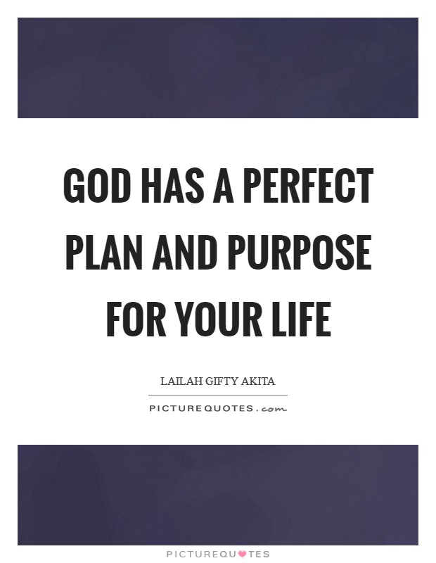 God has a perfect plan and purpose for your life Picture Quote #1