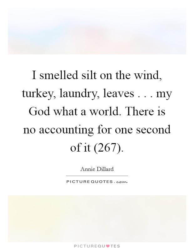 I smelled silt on the wind, turkey, laundry, leaves . . . my God what a world. There is no accounting for one second of it (267) Picture Quote #1
