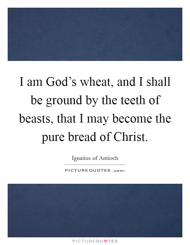 I am God's wheat, and I shall be ground by the teeth of beasts, that I may become the pure bread of Christ Picture Quote #1