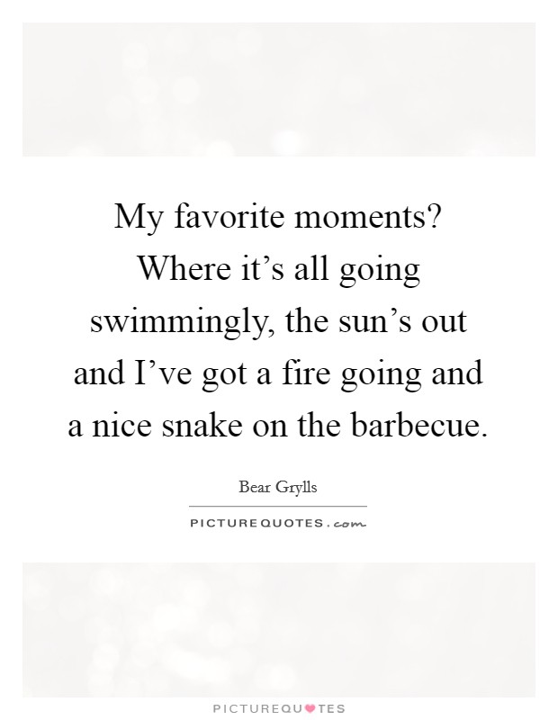 My favorite moments? Where it's all going swimmingly, the sun's out and I've got a fire going and a nice snake on the barbecue Picture Quote #1