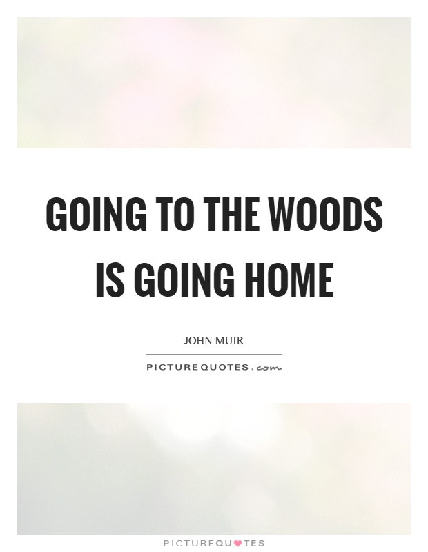 Going to the woods is going home Picture Quote #1