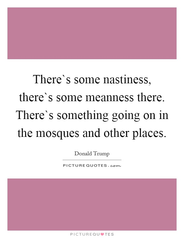 There`s some nastiness, there`s some meanness there. There`s something going on in the mosques and other places Picture Quote #1