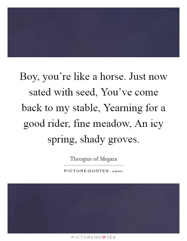 Boy, you're like a horse. Just now sated with seed, You've come back to my stable, Yearning for a good rider, fine meadow, An icy spring, shady groves Picture Quote #1