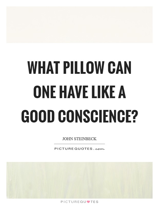 What pillow can one have like a good conscience? Picture Quote #1