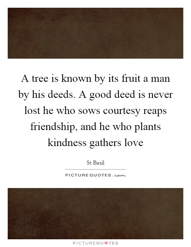 A tree is known by its fruit a man by his deeds. A good deed is never lost he who sows courtesy reaps friendship, and he who plants kindness gathers love Picture Quote #1