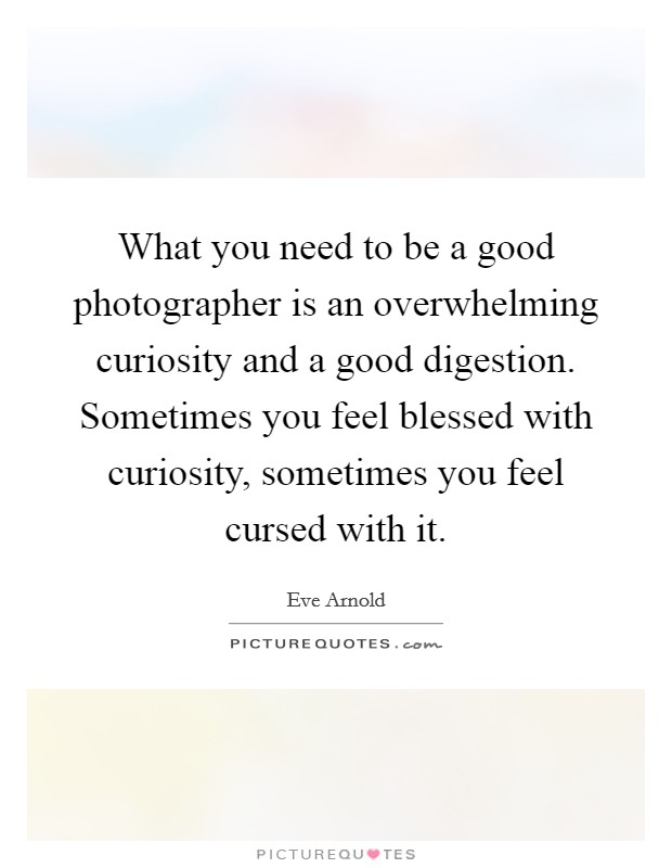 What you need to be a good photographer is an overwhelming curiosity and a good digestion. Sometimes you feel blessed with curiosity, sometimes you feel cursed with it Picture Quote #1
