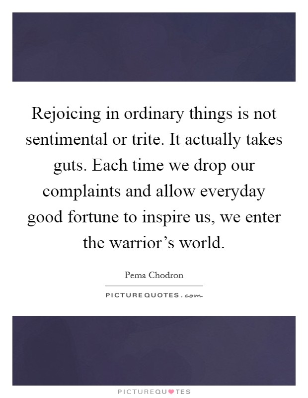 Rejoicing in ordinary things is not sentimental or trite. It actually takes guts. Each time we drop our complaints and allow everyday good fortune to inspire us, we enter the warrior's world Picture Quote #1