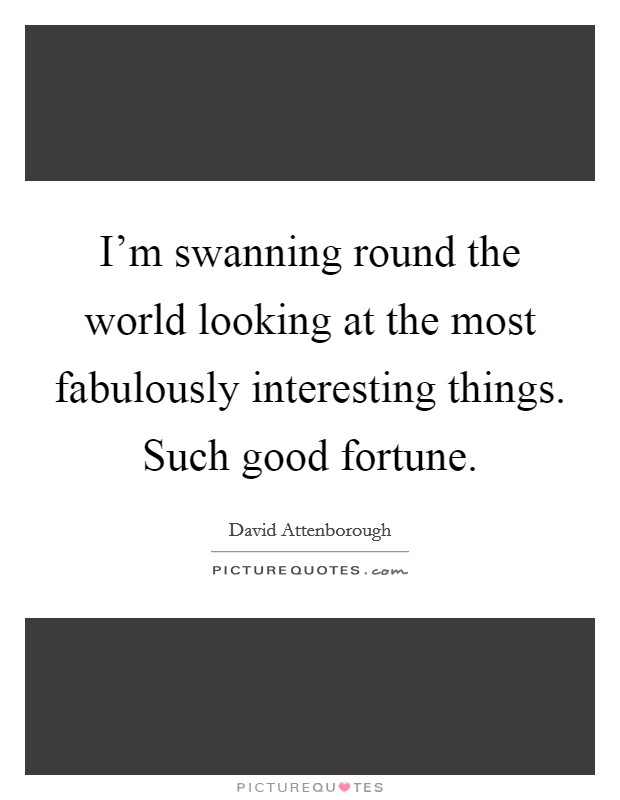 I'm swanning round the world looking at the most fabulously interesting things. Such good fortune Picture Quote #1