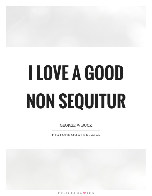I love a good non sequitur Picture Quote #1