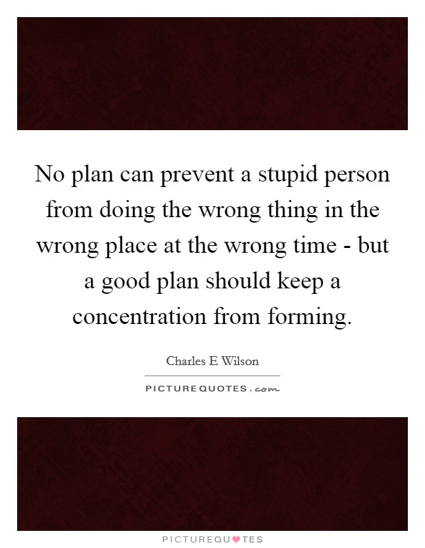 No plan can prevent a stupid person from doing the wrong thing in the wrong place at the wrong time - but a good plan should keep a concentration from forming Picture Quote #1