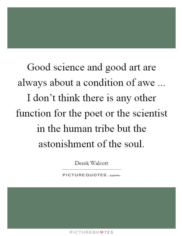 Good science and good art are always about a condition of awe ... I don't think there is any other function for the poet or the scientist in the human tribe but the astonishment of the soul Picture Quote #1
