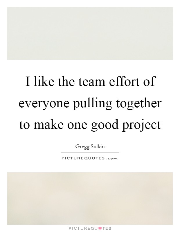 I like the team effort of everyone pulling together to make one good project Picture Quote #1
