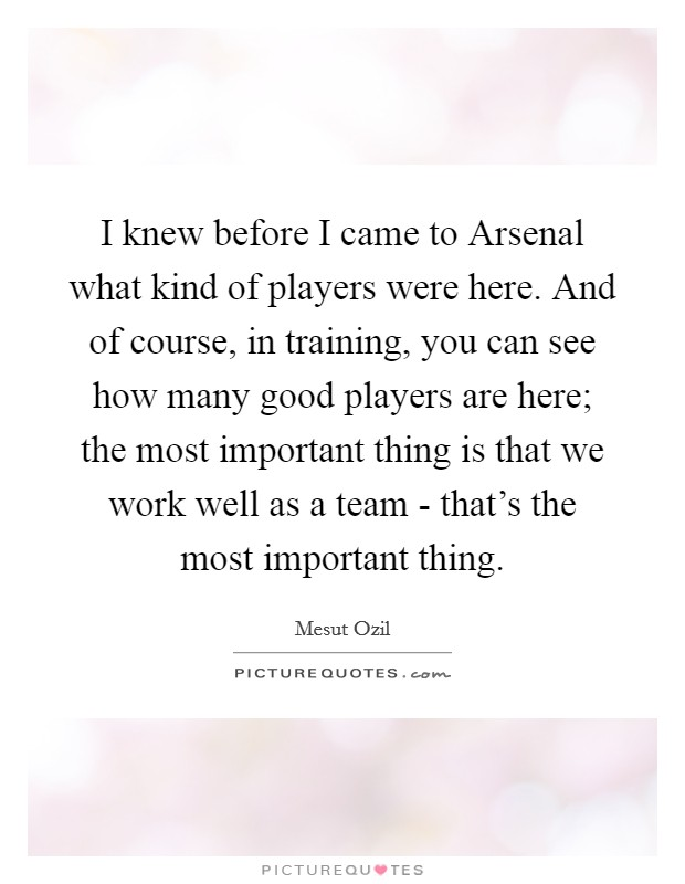 I knew before I came to Arsenal what kind of players were here. And of course, in training, you can see how many good players are here; the most important thing is that we work well as a team - that's the most important thing Picture Quote #1
