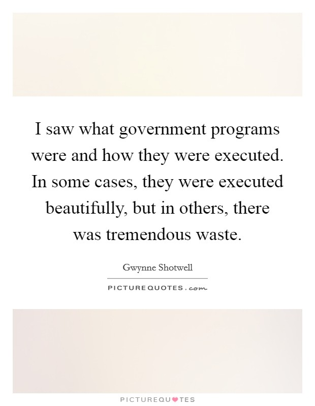 I saw what government programs were and how they were executed. In some cases, they were executed beautifully, but in others, there was tremendous waste. Picture Quote #1
