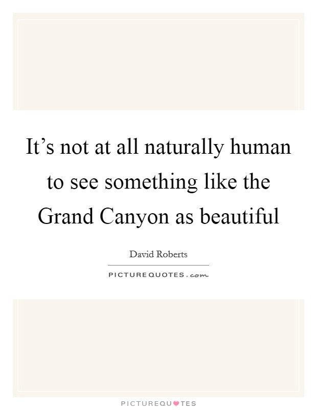 It's not at all naturally human to see something like the Grand Canyon as beautiful Picture Quote #1
