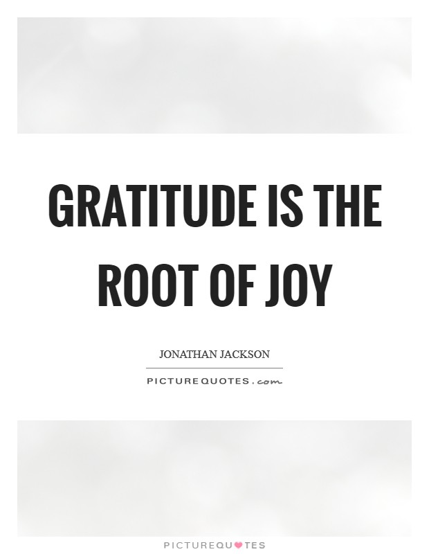 Gratitude is the root of joy Picture Quote #1