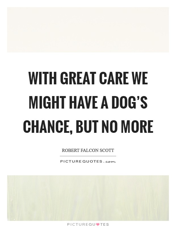 With great care we might have a dog's chance, but no more Picture Quote #1