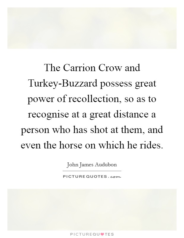 The Carrion Crow and Turkey-Buzzard possess great power of recollection, so as to recognise at a great distance a person who has shot at them, and even the horse on which he rides Picture Quote #1