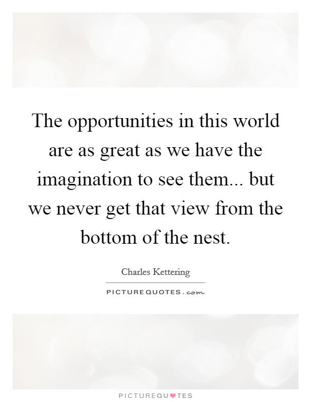 The opportunities in this world are as great as we have the imagination to see them... but we never get that view from the bottom of the nest Picture Quote #1
